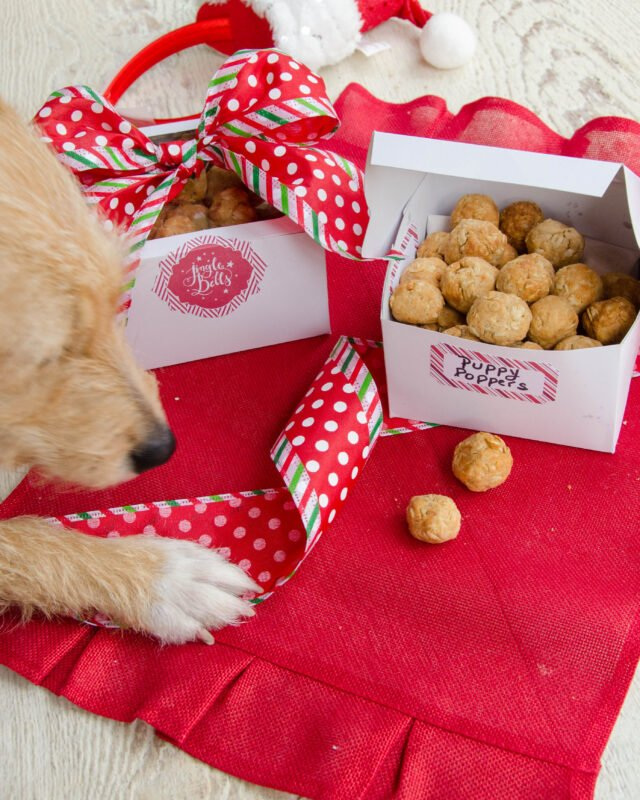Air Fried Puppy Poppers