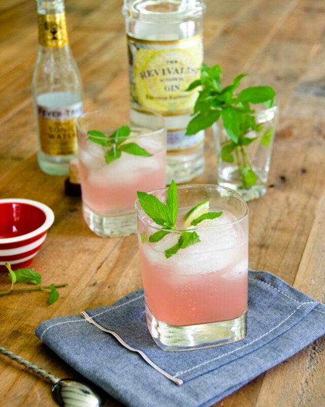 Rhubarb-Mint Gin and Tonic
